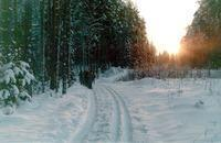 Мороз и солнце,