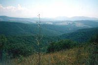 Вот такое оно - начало Кавказа