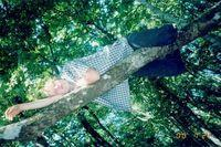 А говорят люди на деревьях не живут...