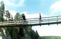 Навесные мосты